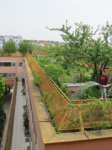 Motiv: Miss Sargfabrik, Wien Architekt: BKK-2 Copyright: Reinhard Seiß / URBAN+